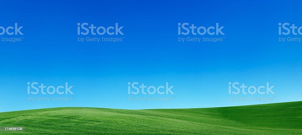 Panoramic spring landscape 55MPix  XXXXL meadow, blue sky stock photo
