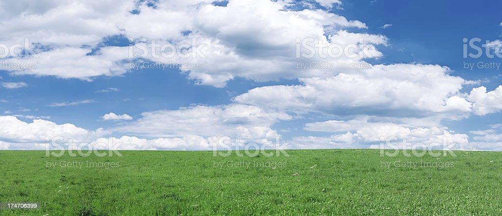 Panoramic spring landscape  60 MPix XXXXL size royalty-free stock photo
