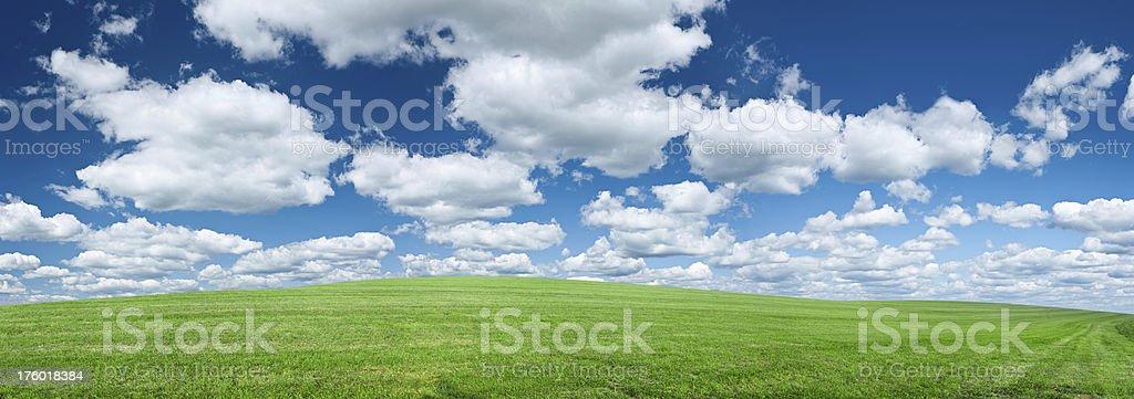 Panoramic spring landscape 63MPix XXXXL - meadow, blue sky royalty-free stock photo