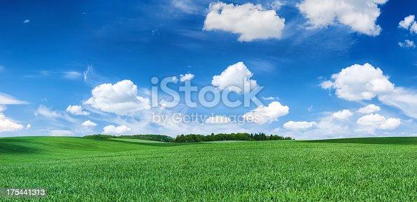 istock Panoramic spring landscape XXXXL 60 MPix- green field, blue sky 175441313