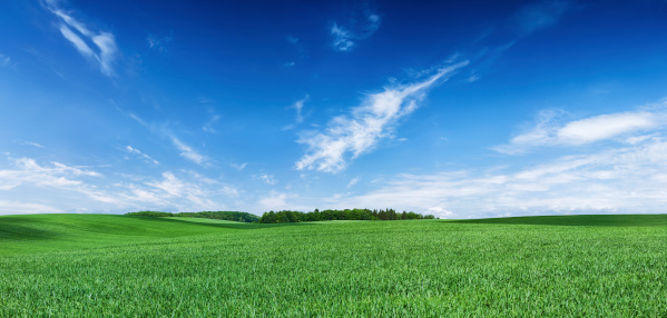 [b]Spring landscape - green meadow, the blue sky - 68 MPix XXXXL size  This panoramic landscape is an very high resolution multi-frame composite and is suitable for large scale printing.[/b]  [url=/file_closeup.php?id=6350358][img]/file_thumbview_approve.php?size=3&id=6350358[/img][/url] [url=/file_closeup.php?id=20444300][img]/file_thumbview_approve.php?size=3&id=20444300[/img][/url]  [url=/file_closeup.php?id=6364228][img]/file_thumbview_approve.php?size=3&id=6364228[/img][/url] [url=/file_closeup.php?id=20444087][img]/file_thumbview_approve.php?size=3&id=20444087[/img][/url]  [url=/file_closeup.php?id=20452149][img]/file_thumbview_approve.php?size=3&id=20452149[/img][/url] [url=/file_closeup.php?id=20453059][img]/file_thumbview_approve.php?size=3&id=20453059[/img][/url]  [b]More XXXXL SPRING PANORAMAS in LIGHTBOX:[/b] [url=http://www.istockphoto.com/search/lightbox/5288347] [img]http://bhphoto.pl/IS/panoramas_380.jpg[/img][/url]  [url=http://www.istockphoto.com/search/lightbox/6216820] [img]http://bhphoto.pl/IS/square_380.jpg[/img][/url]  [b] XXXL BLUE SKY PANORAMAS [/b] [url=http://www.istockphoto.com/search/lightbox/5434517] [img]http://bhphoto.pl/IS/sky_380.jpg[/img][/url]  [url=http://www.istockphoto.com/search/lightbox/5779032] [img]http://bhphoto.pl/IS/snorkeling_380.jpg[/img][/url]  [url=http://www.istockphoto.com/search/lightbox/5908303] [img]http://bhphoto.pl/IS/paintball_380.jpg[/img][/url]  [url=http://www.istockphoto.com/search/lightbox/5460418] [img]http://bhphoto.pl/IS/monks_380.jpg[/img][/url]  [url=http://www.istockphoto.com/search/lightbox/5288409] [img]http://bhphoto.pl/IS/speed_380.jpg[/img][/url]