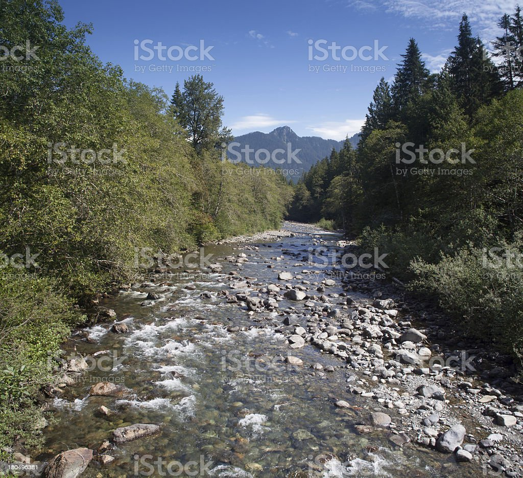 Panoramic Stillaguamish RIver royalty-free stock photo