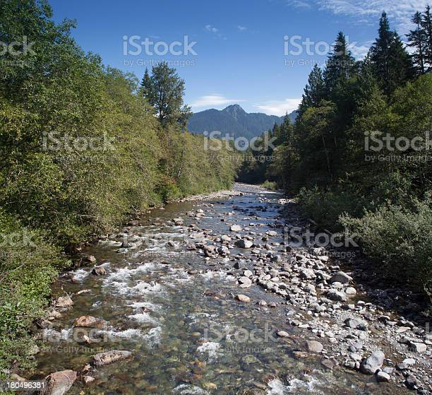 Panoramic Stillaguamish River Stock Photo - Download Image Now