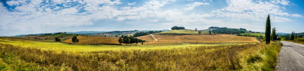 Panoramic tuscan landscape in summer stock photo