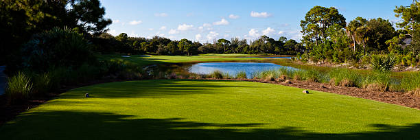 Panoramic View From Tee Box on Golf Course in Florida stock photo