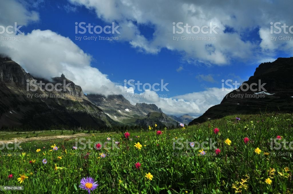 Panoramic view 'going to the sun road', Montana, USA stock photo