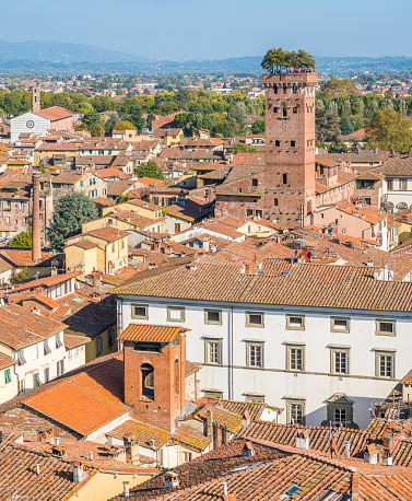 istock Panoramic view in Lucca, with the famous Guinigi Tower. Tuscany, Italy. 1098053542