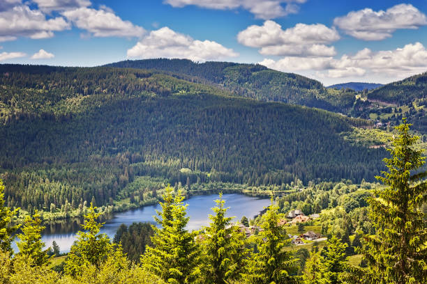 Panoramic view lake Schluchsee. Black Forest. Baden-wuerttemberg region. Germany stock photo