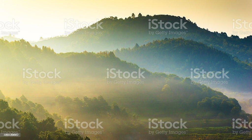 Panoramic view misty morning sunrise in mountain at north Thailand bildbanksfoto