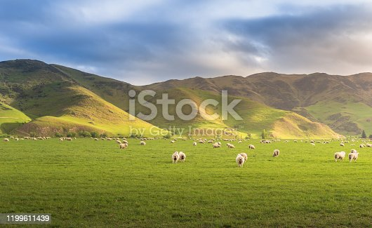 Panoramic view nature landscape south island New Zealand most famaus tourist place in New zealand