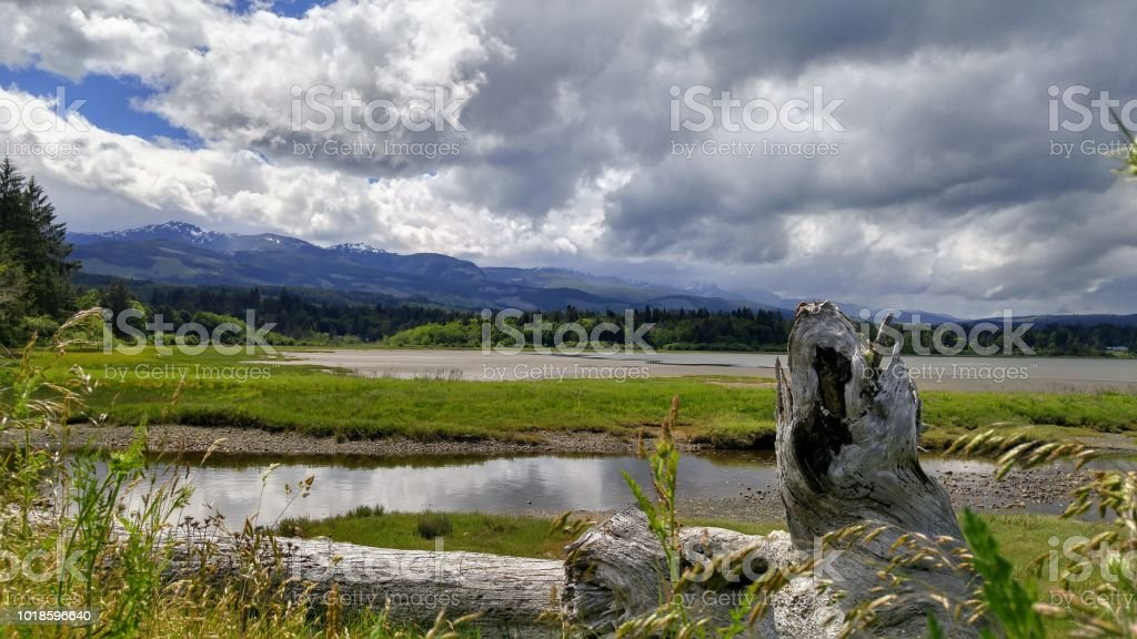 A panoramic view of a bay at low tide stock photo