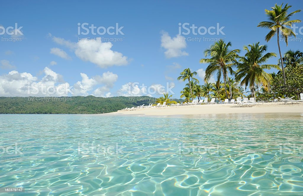 Panoramic view of a clear beach and palm trees stock photo