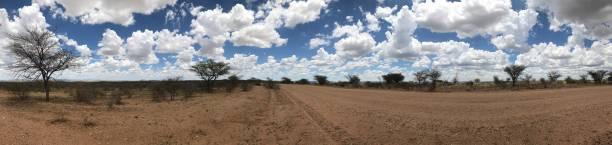 panoramablick auf einer schotterstraße - afrikanische steppe dürre stock-fotos und bilder