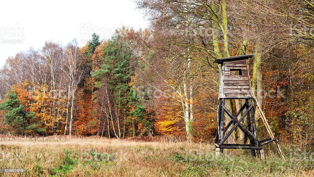 Panoramic view of a hunting pulpit in autumn. stock photo