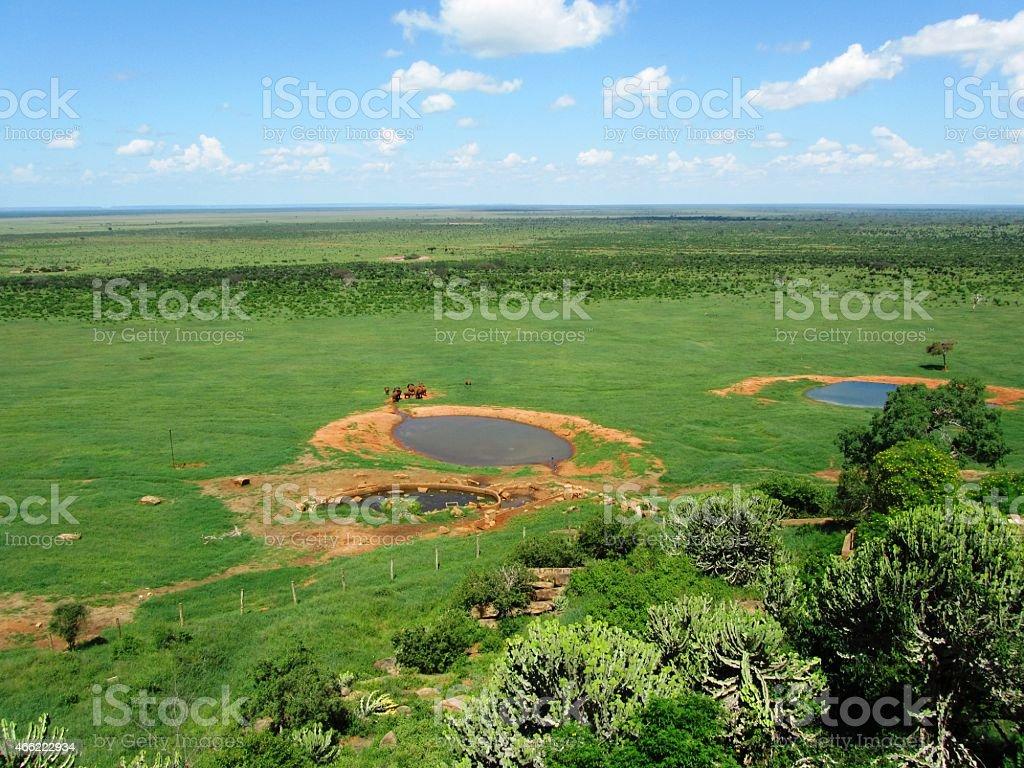 Panoramic view of a lodge in Tsavo West Kenya stock photo