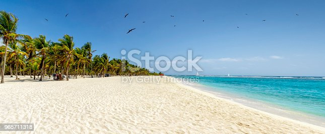Panoramic view of a white sand beach with coconut trees in the Caribbean sea. Cayo Sombrero at Morrocoy National Park, Venezuela.