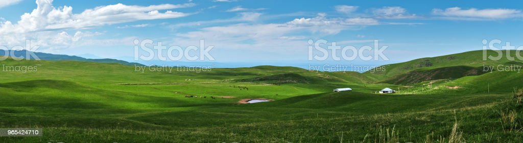 Panoramic view of beautiful green hills with little pond and horses in the pasture, Ushkonyr plateau, Kazakhstan. royalty-free stock photo