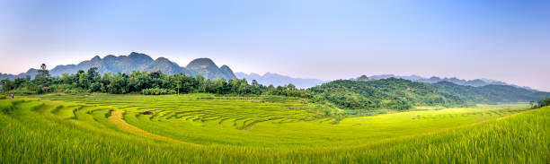 Panoramic view of beautiful green terraces of Pu Luong commune, Thanh Hoa province, Vietnam stock photo