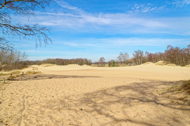 Panoramic view of Boberger dunes in nature reserve Boberger Niederung stock photo