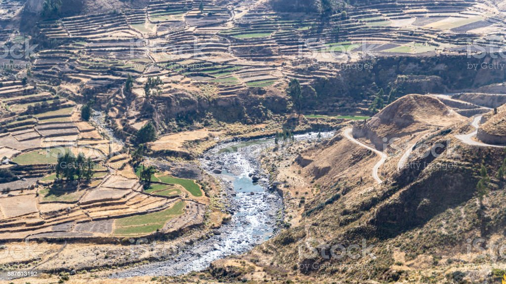 Panoramic view of Colca Canyon, Peru, South America with farming terraces stock photo