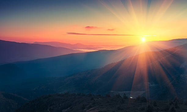 panoramic view of  colorful sunrise in mountains. - trees in mist stock pictures, royalty-free photos & images