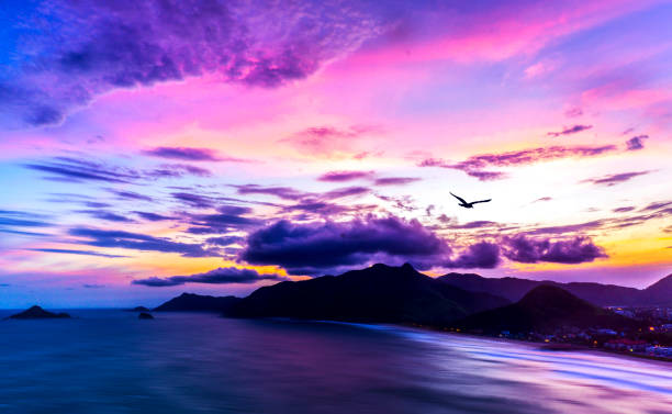 Panoramic View Of Exotic Tropical Ocean Islands And Mountain Sunset with Slow Waves And Purple Colorful Sky With Seagull Flying In stock photo
