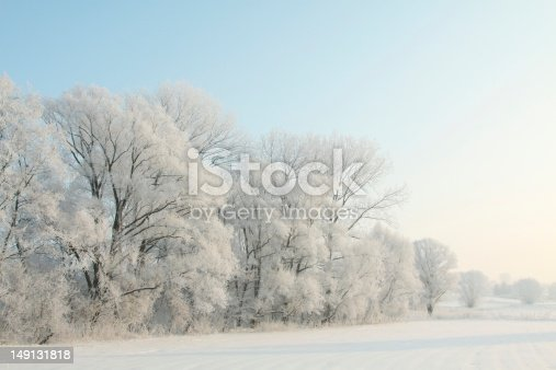1034754000 istock photo Panoramic view of frosty trees covered in snow at dawn 149131818