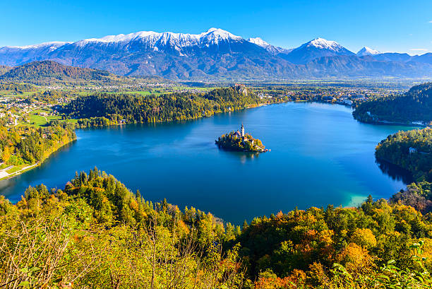 panoramic view of lake bled from mt. osojnica, slovenia - 斯洛維尼亞 個照片及圖片檔