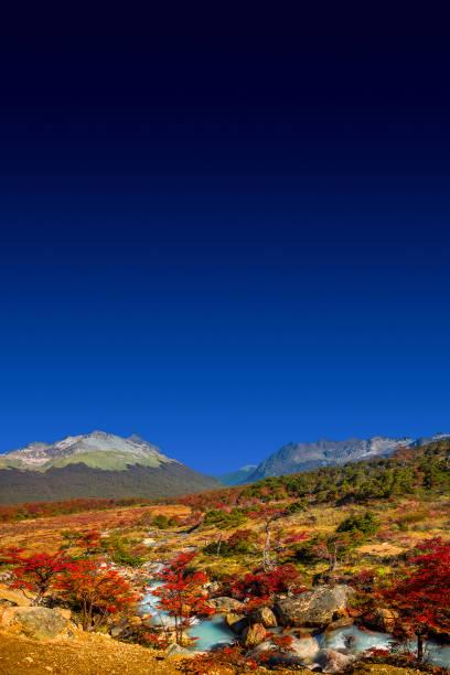 Panoramablick auf den magischen bunten Märchenwald im Nationalpark Tierra del Fuego, Patagonien, Argentinien – Foto