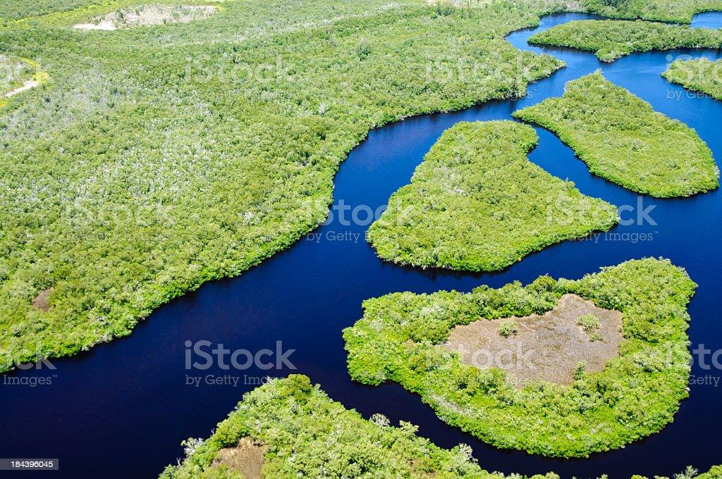 Panoramic view of Mangrove Estuary stock photo