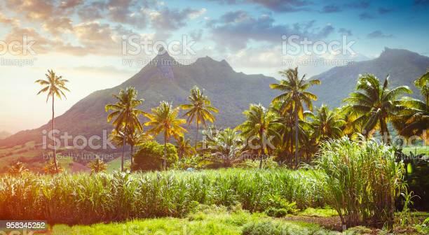 Panoramic view of Mauritius