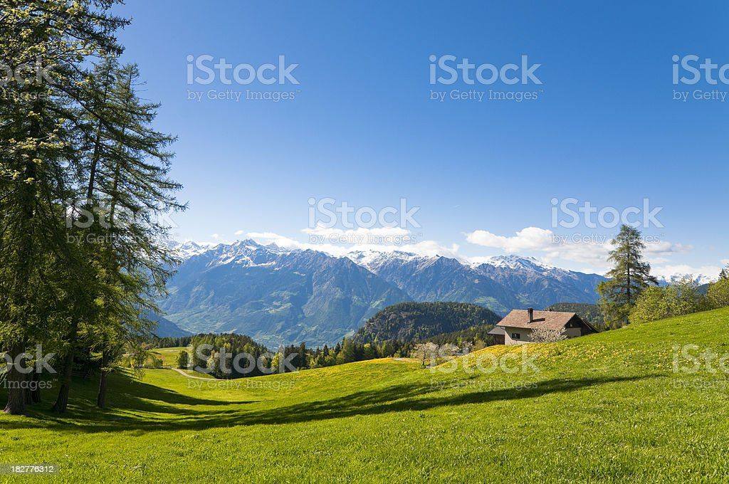 Panoramic view of mountain valley in Italian Alps royalty-free stock photo