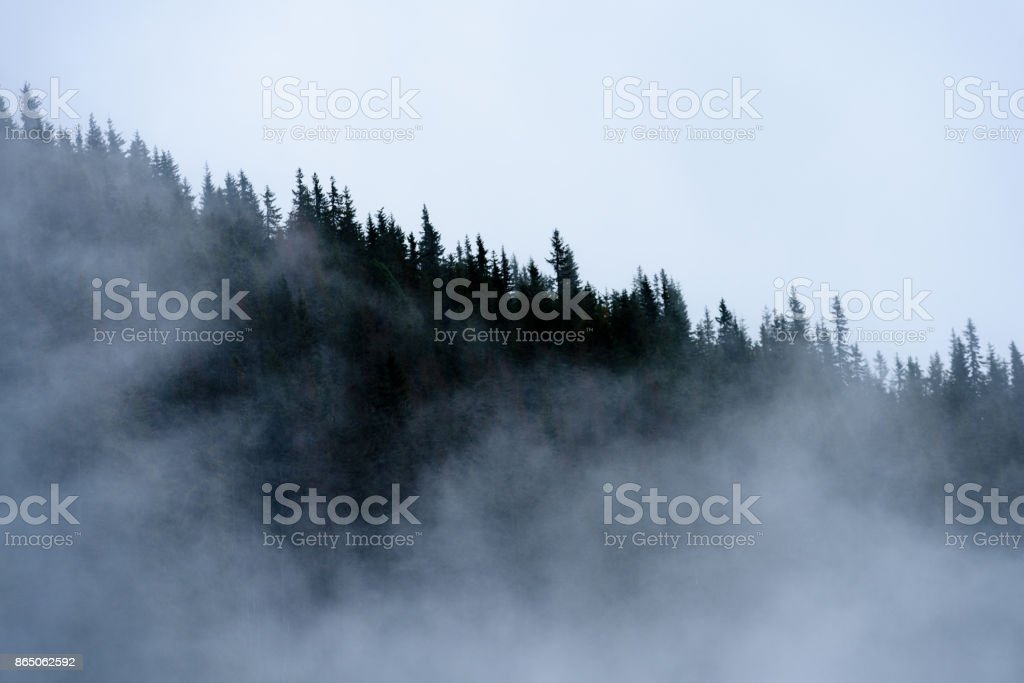 panoramic view of of mountains in misty forest stock photo