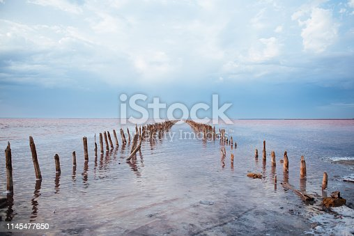 Panoramic view of Pink Salt Lake in Ukraine. This lake turns pink in summer cause of an algae with red pigments. Blue sky, horizon,copy space.
