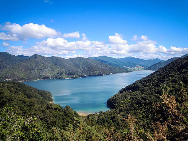 Panoramic view of Queen Charlotte Sound – Foto