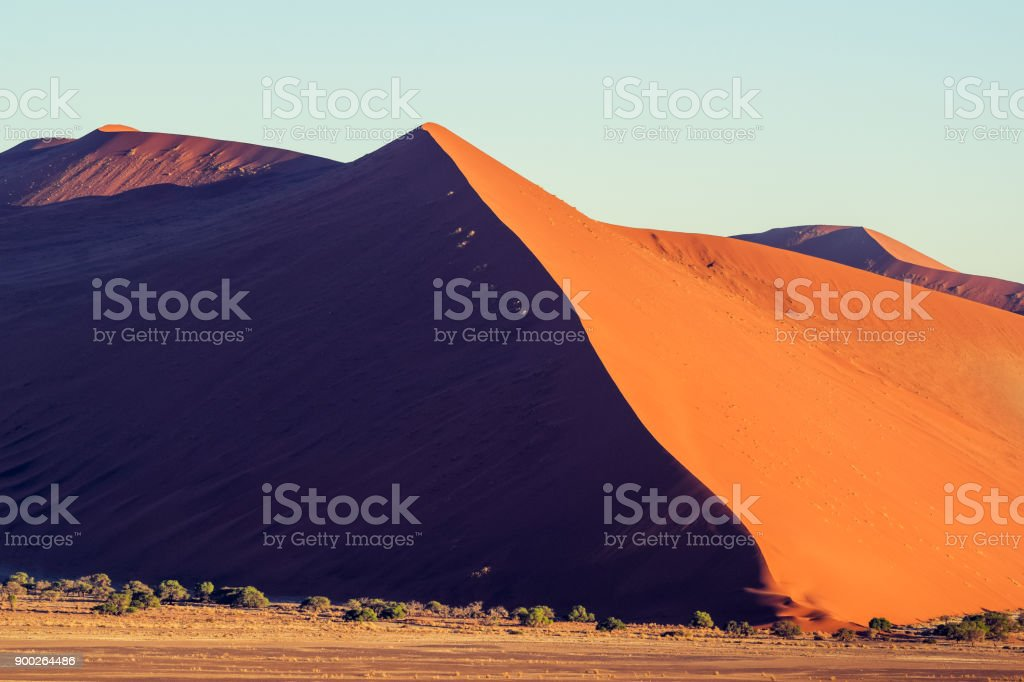 Panoramic view of red sand dunes in Sossusvlei near Sesriem in famous Namib Desert in Namibia, Africa. Sossusvlei is a popular tourist destination, the dunes are amongst the highest in the world. stock photo