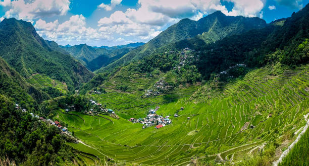 panoramic view of rice terraces. batad, philippines - baguio city stock photos and pictures