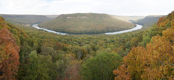 Panoramic view of River Gorge in Tennessee Panorama fall seasonal view of the Temnnessee River in the Tennessee River Gorge. Elder Mountain is surrounded by the river. The photo is taken from Snoopers Rock. tennessee river stock pictures, royalty-free photos & images