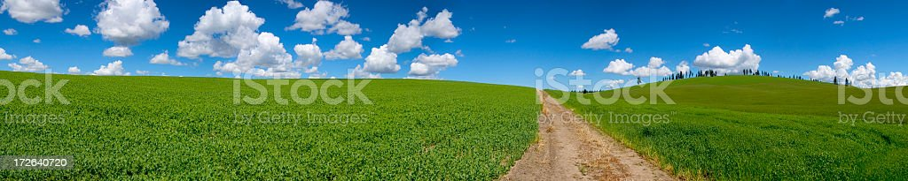 Panoramic view of rolling green hills royalty-free stock photo