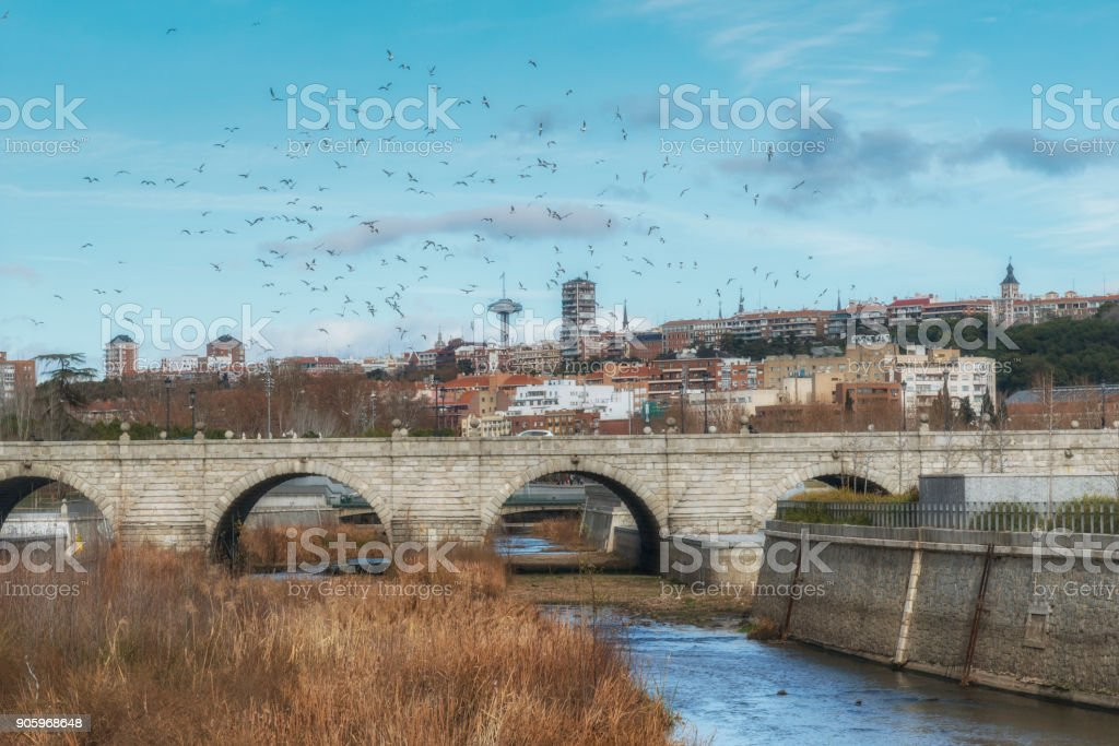 Panoramic view of Segovia bridge and Madrid from the Manzanares river with the seagulls. Spain stock photo