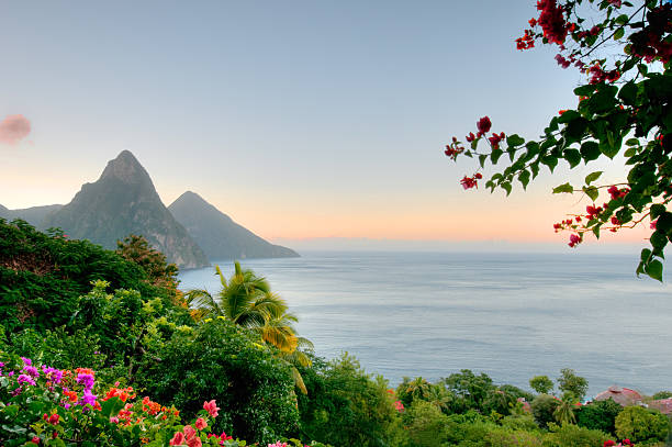 panoramic view of st lucias twin pitons at sunrise - caribbean stock pictures, royalty-free photos & images