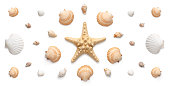 High angle, panoramic view of seashells and starfish isolated on white background