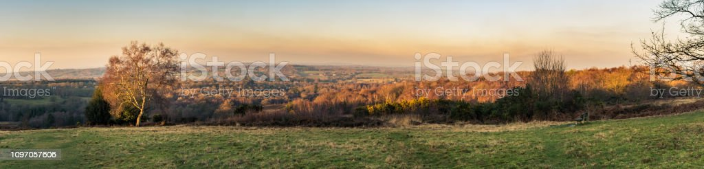Panoramic view of sunset over the Ashdown Forest in Sussex, England, UK on an evening in winter, with a tree lit up by the sun in the foreground stock photo