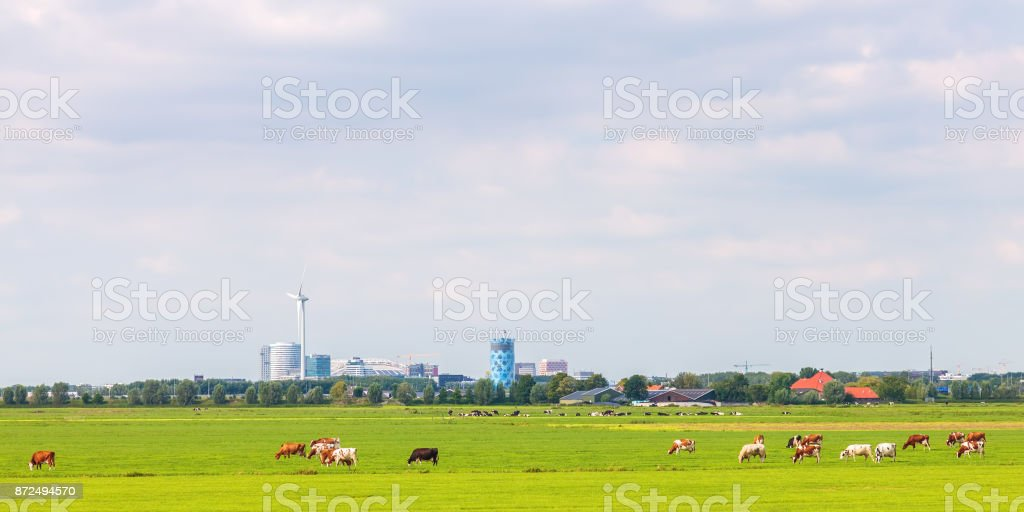 Panoramic view of the Amsterdam Southeast office area (Bijlmer) stock photo