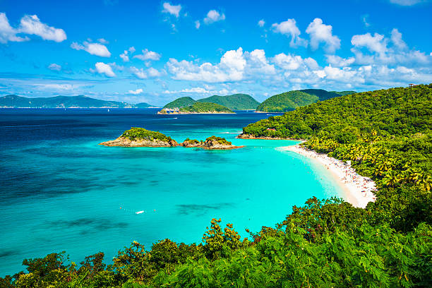 a panoramic view of the beach at trunk bay in st john  - caribbean stock pictures, royalty-free photos & images