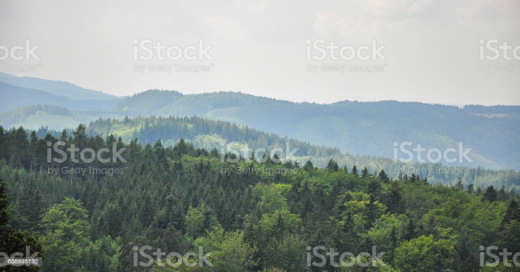 Panoramic view of the forest in Karlovy Vary, Czech Republic stock photo