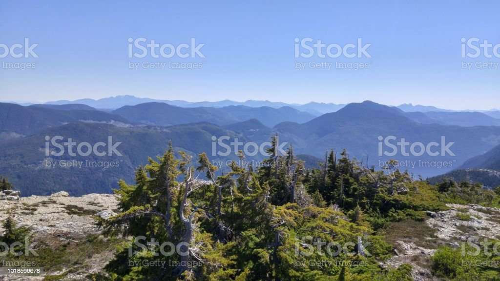 A panoramic view of the mountain tops on the west coast of vancouver island stock photo