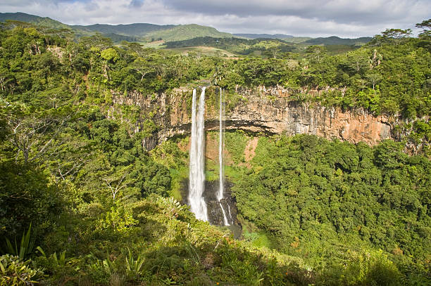 Panoramic view of the stunning Alexandra Falls in Mauritius Alexandra Falls, Black River Gorges National Park, Mauritius. The falls sit 700m about sea level and you can enjoy spectacular panoramic views of the Southern part of Mauritius. ravine stock pictures, royalty-free photos & images