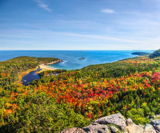 vue panoramique des couleurs d'automne et des eaux bleues de la baie dans le parc national de l'acadie - couleur des végétaux photos et images de collection