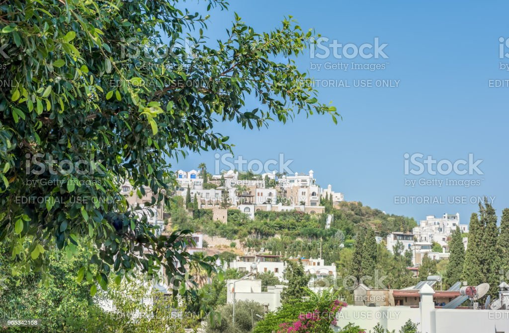Panoramic view of Typical Aegean architecture houses zbiór zdjęć royalty-free